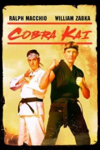 Cobra-Kai-Season-1