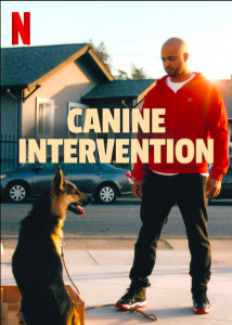 Canine-Intervention